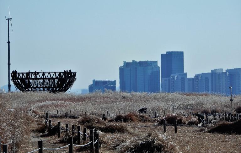 Seoul - Urban Greenery - NAeul Park - oasis in the city 3