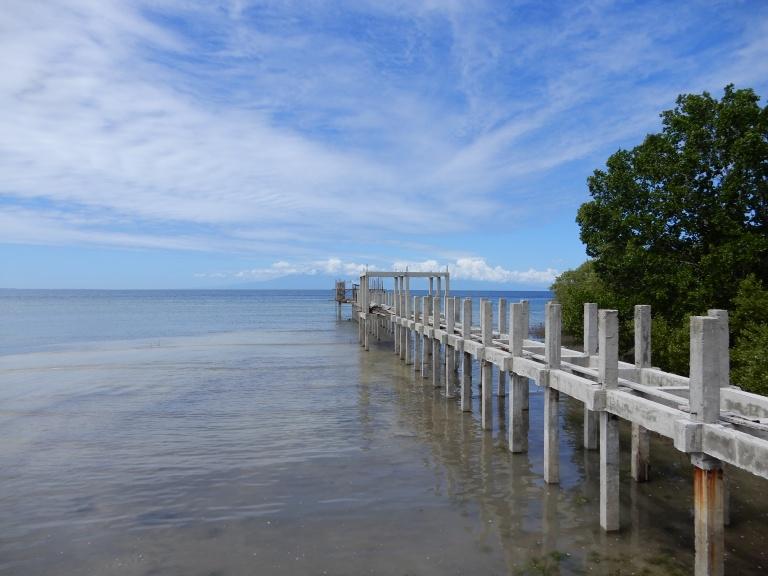 finfin corona _ bridge to eternity siquijor philippines