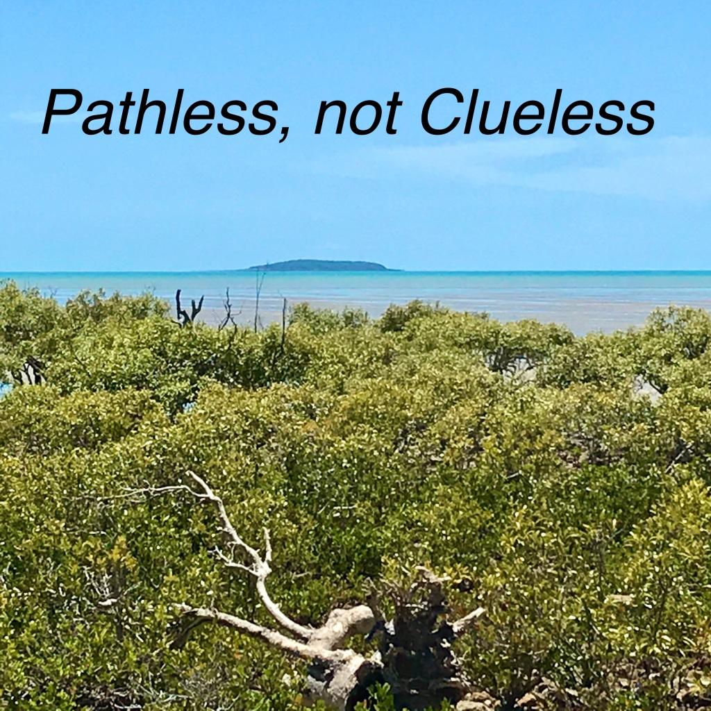 Pathless, not Clueless. @The Journey Finfinnews