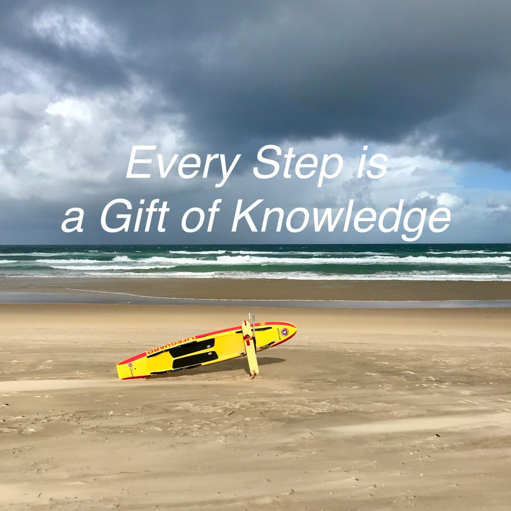 Every step is a gift of knowledge, even the detours. @Sunshine Coast (c)finfinnews